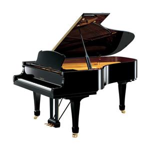 Clases de Piano - Academia Musical Quilmes
